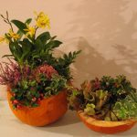 Elegant Halloween - Blooming Vision